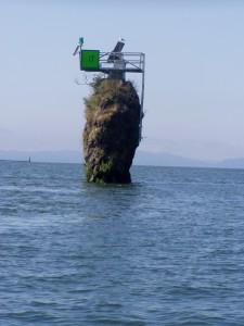 Pillar Rock on the Lower Columbia